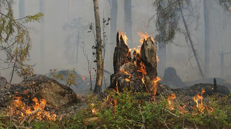 Rischio incendi boschivi